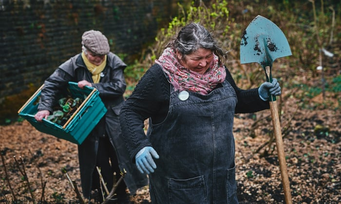 Incredible Edible: Yorkshire town's food-growing scheme takes root