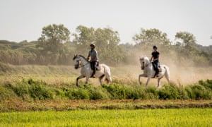 Horse riding in the Setúbal region of Portugal.