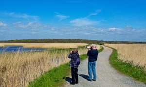 Birdwatchers at the RSPB Minsmere reserve in Suffolk.