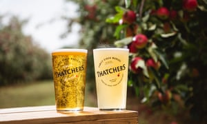 Thatchers Cider in glasses