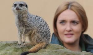 Meerkat expert Caroline Westlake, who has been cleared of assault.