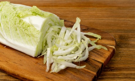 Cooking with wombok: 'It's the Norah Jones of the cabbage kingdom'