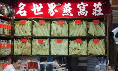Shark fin traders in Hong Kong