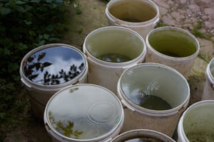 Buckets of collected rain water.