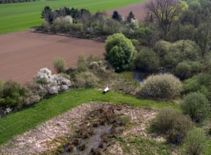 Malaise traps were set in protected areas in Germany as part of the study
