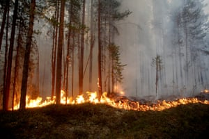Karbole, Sweden: A wildfire rages outside Ljusdal