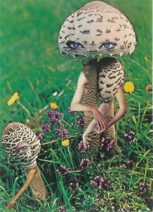 'Mushroom and Child' by Seana Gavin.