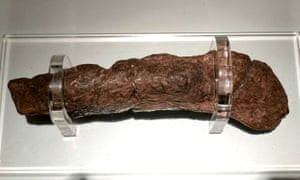 The Lloyds Bank coprolite: fossilised human faeces dug up from a Viking site at Coppergate, York, England by archaeologists. It contains pollen grains, cereal bran, and many eggs of whipworm and maw-worm (intestinal parasites). It is on display at the Jorvik Centre in York.