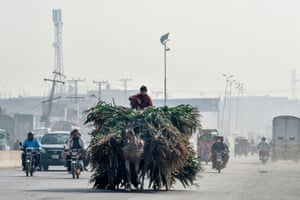 A man rides a loaded cart in heavy smog in Lahore, Pakistan