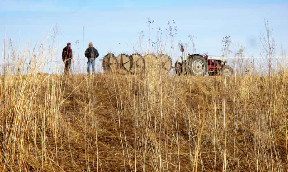 For decades, the midwest has boasted the highest concentration of farms in the US. But now, young farmers need more incentives to stay put.