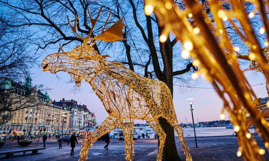 Illuminated reindeer decorations in Stockholm.