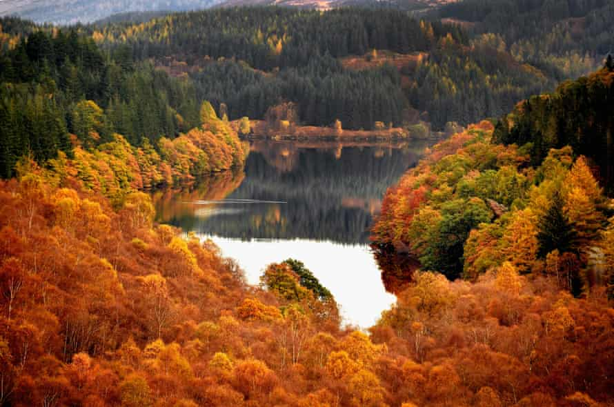 Autumn display at Loch Lomund in Scotland