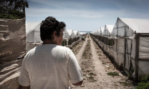 Many Romanian women work in greenhouses across Ragusa, where inspections have found scant regard for labour laws.