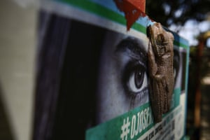 A tree frog sits on a sign in Buenaventura, Colombia