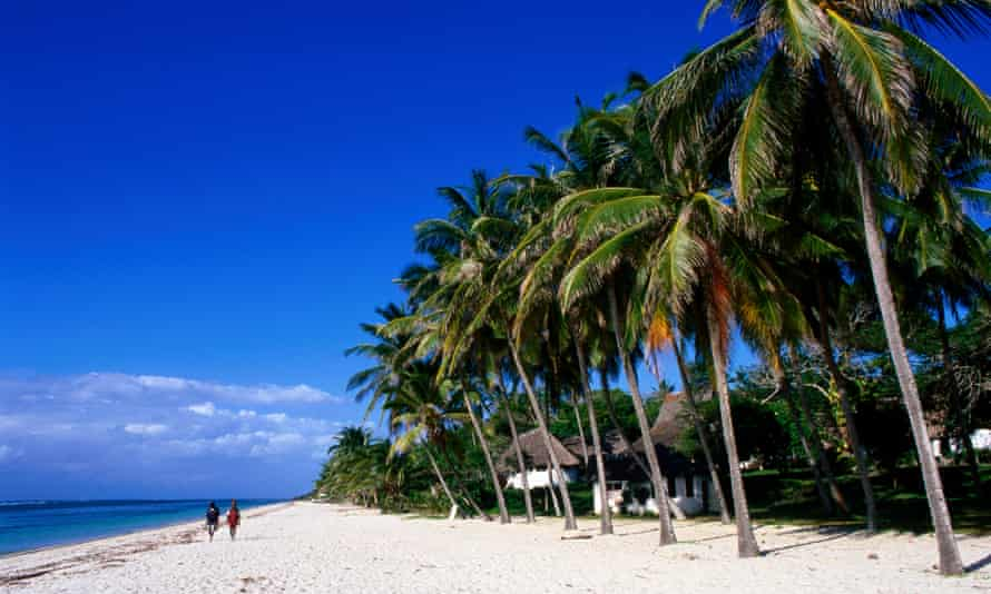 Palms and thatched huts, Tiwi Beach.