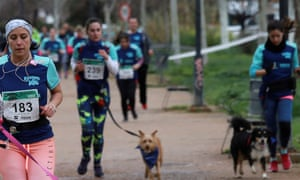 'Running with Dog' run in Spainepa06612339 Runners and dogs take part in the first edition of the charity race 'Running with dog' in Granada, Spain, 18 March 2018. More than 280 people and their dogs took part in the race that aims to collect money for animal refuges. EPA/PEPE TORRES