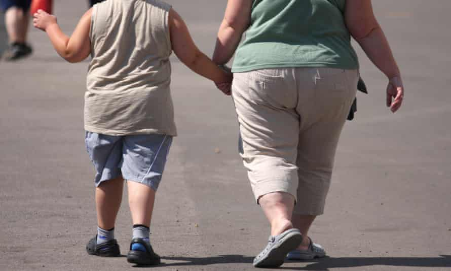 Overweight child and mother.