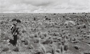 Limbert, 10, altiplano Bolivia 2015