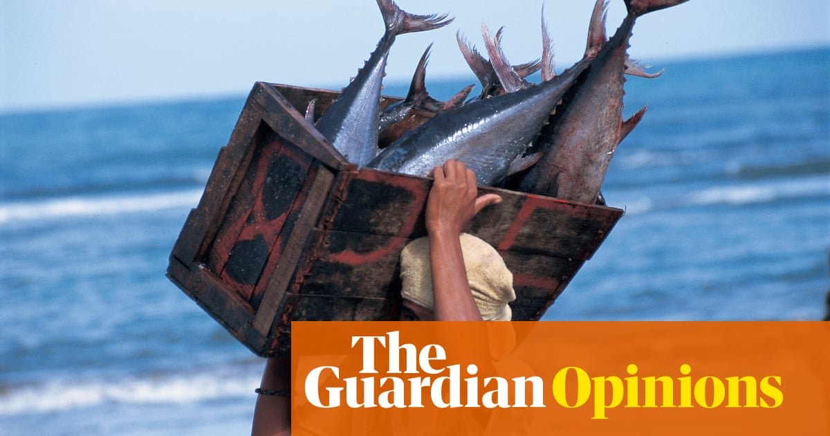 Research Essay Proposal Overfishing Is As Big A Threat To Humanity As It Is To Our Oceans  Dermot  Ogorman  Guardian Sustainable Business  The Guardian Essay On Importance Of Good Health also Sample Business School Essays Overfishing Is As Big A Threat To Humanity As It Is To Our Oceans  What Is An Essay Thesis