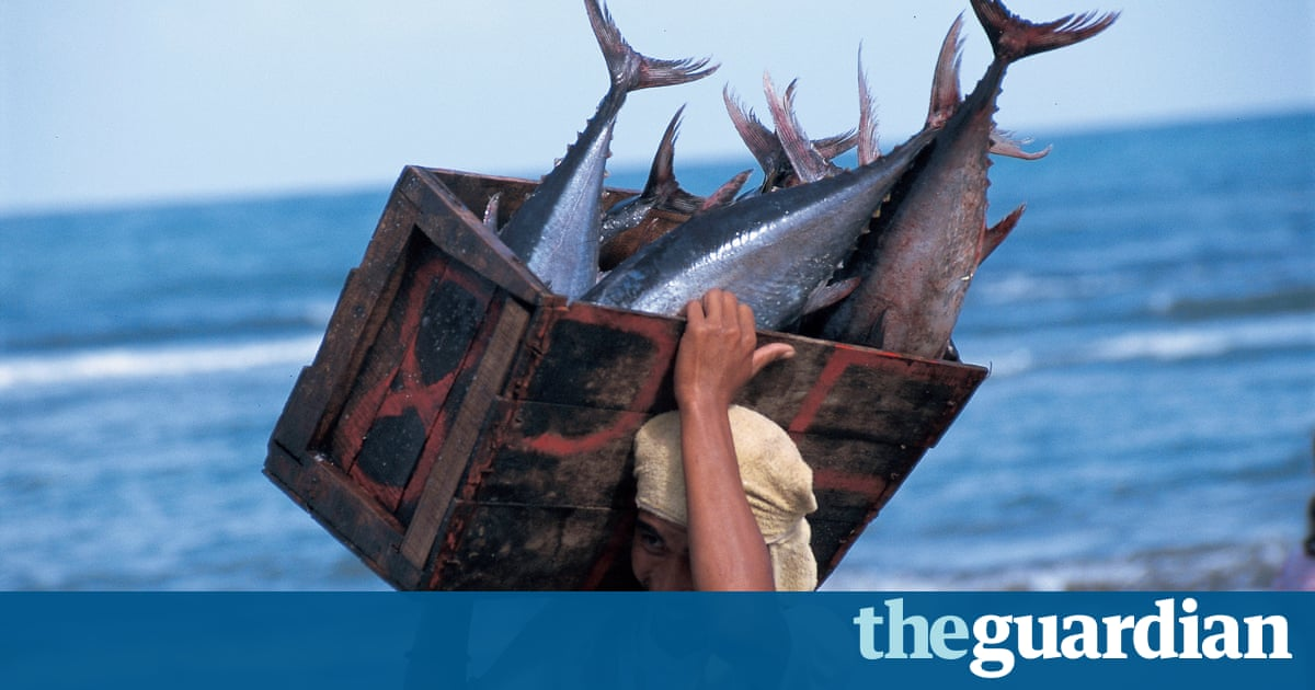 sustainable fishing Some 79% of seafood range is sustainable, according to survey which shows supermarkets are selling more 'blue label' products than ever.