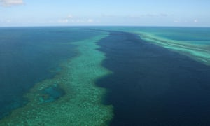 A senior scientist at the taxpayer-funded Australian Institute of Marine Science, the key Great Barrier Reef research body, is alleged to have fabricated $556,508 for non-existent purchases and analysis over seven years.