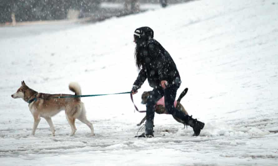 An Atlanta woman and her dog play in the snow.