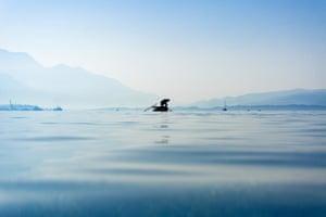 Bijela, Montenegro A fisherman checks his catch in the Bay of Kotor, Bijela, Montenegro