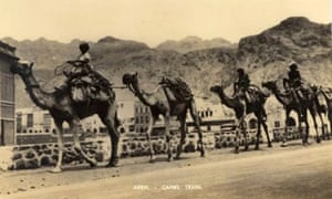 Postcard with a view of a camel train, Aden. This vignette of a caravan connecting Aden with its Yemeni hinterland illustrates how valuable postcards are as illustrations of everyday events as well as places. This card dates from the period when Aden was a British colony.