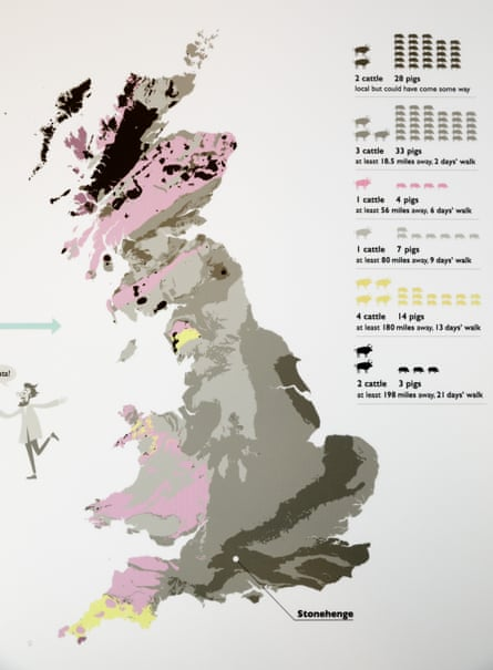 A map showing strontium isotope results for samples taken from cattle and pigs found at Durrington Walls, near Stonehenge