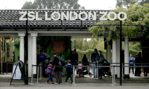 Visitors go in the main entrance of London Zoo.