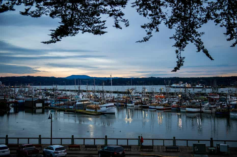 Fishing vessels sit in port in Newport, Ore. on January 7, 2021. Amanda Lucier for The Guardian