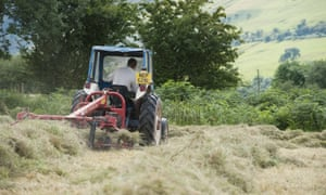 Cutting hay at harvest time at Blaenglyn Farm in the Brecon Beacons national park, south Wales.
