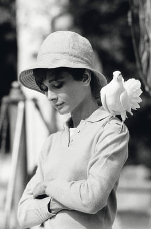 Hepburn With Dove, South of France, 1966I was on the set of Two for the Road, a film starring Audrey Hepburn with Albert Finney. I enjoyed working with Audrey Hepburn because she was so willing to be photographed. She was, as you'd expect kind, but she did have a wonderful mischievous side to her. We were shooting in a garden and out of nowhere, a dove landed on her shoulder. Most people would have flinched. But Audrey was not only very professional, she knew I was taking photographs. She stood completely still, looked down, then looked-up and smiled. A few frames later, the dove flew away.