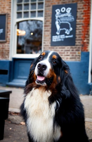 Max at The Windmill, Clapham