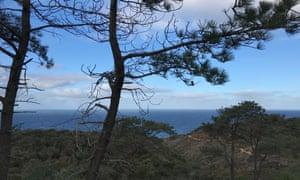 Torrey Pines state natural reserve, San Diego.