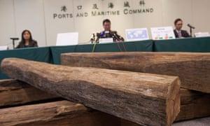 Hong Kong customs officials with confiscated Honduras rosewood log
