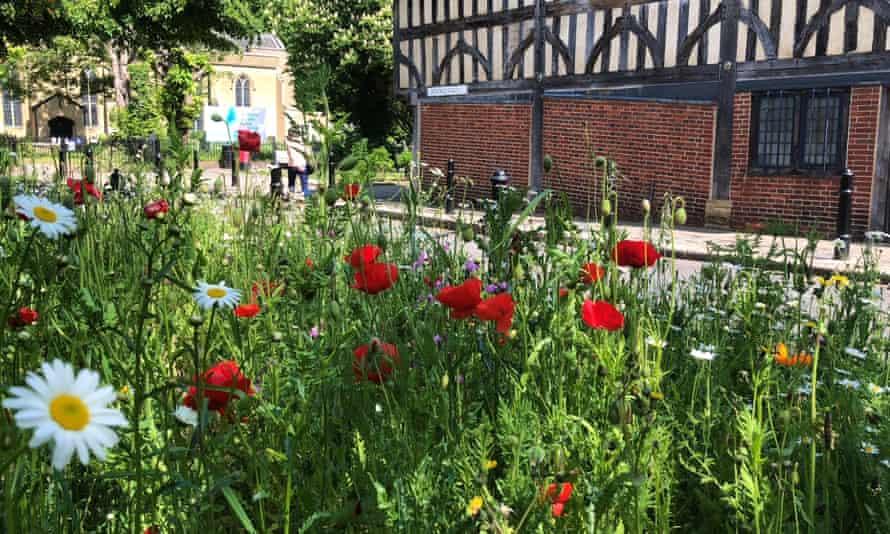 Walthamstow Village in Bloom