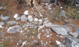 Human bones litter the ground outside a recently looted burial in Khuvsgul province.