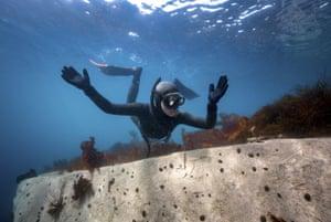 Ercümen underwater