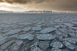 By Kellie Netherwood. March is a great time to visit the Norwegian archipelago of Svalbard. The sun has returned but having not yet reached its polar summer heights, provides soft light for most of the day. This was taken as we sailed through the early formation of sea ice, known as 'pancake ice'.