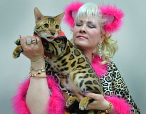 Bishkek, KyrgyzstanAn owner with her Bengal cat during the International Cat Exhibition
