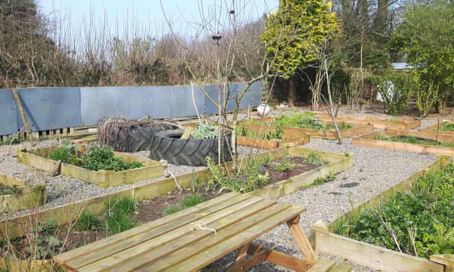 Kim Stoddart's outside veg patch provides a chance to pick fresh food.