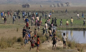 Villagers watch as a herd of wild elephants walks towards them