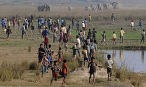 Villagers watch as a herd of wild elephants walks towards them looking for food in Kurkuria, about 45km east of Gauhati, India.