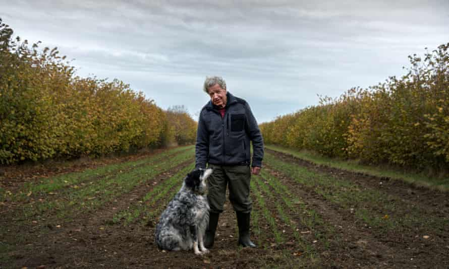 Dr Martin Wolfe at Wakelyns Agroforestry in Suffolk in 2017.