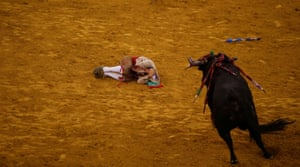 A member of Coruche forcados group lies on the ground after he was thrown by a bull at the Campo Pequeno bullring in Lisbon