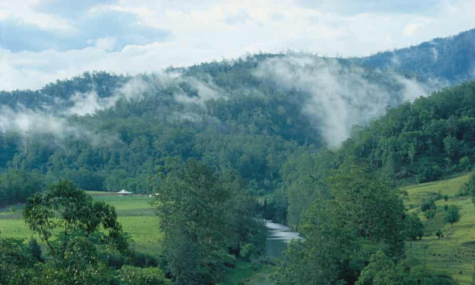 Steam rises over the valley around the Bellingen river, New South Wales, Australia.