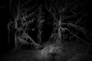 """Witches Sabbath, 2019Goodall adds: """"There are subjects in my images, like trees or rocks, but equally I view the subject as the darkness beyond them. There is an implicit question in the dark - what's there?"""""""
