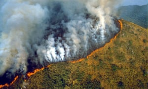 aeial view of a forest fire in the brazilian amazon