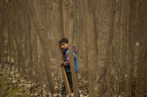 A boy waits as his sheep graze on a cold day in Indian-controlled Kashmir